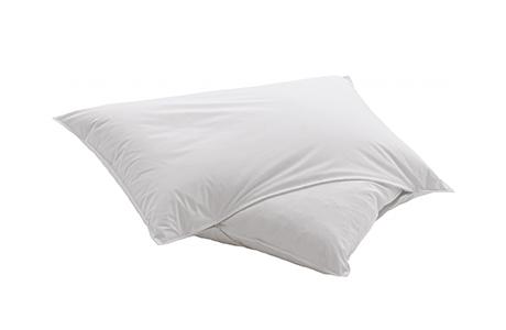 dauny martina pillow silk blanket eco comforter 枕頭