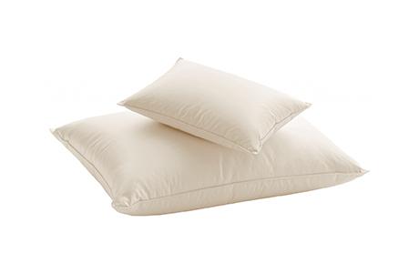 dauny excellence pillow silk blanket eco comforter 枕頭
