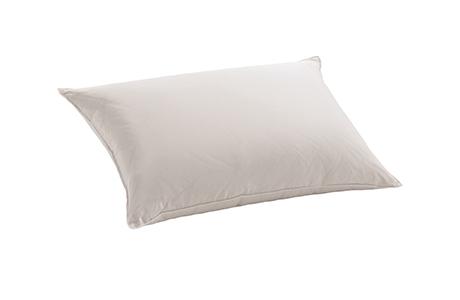 dauny eider down soft plus pillow silk blanket eco comforter pillow 鴨絨枕頭